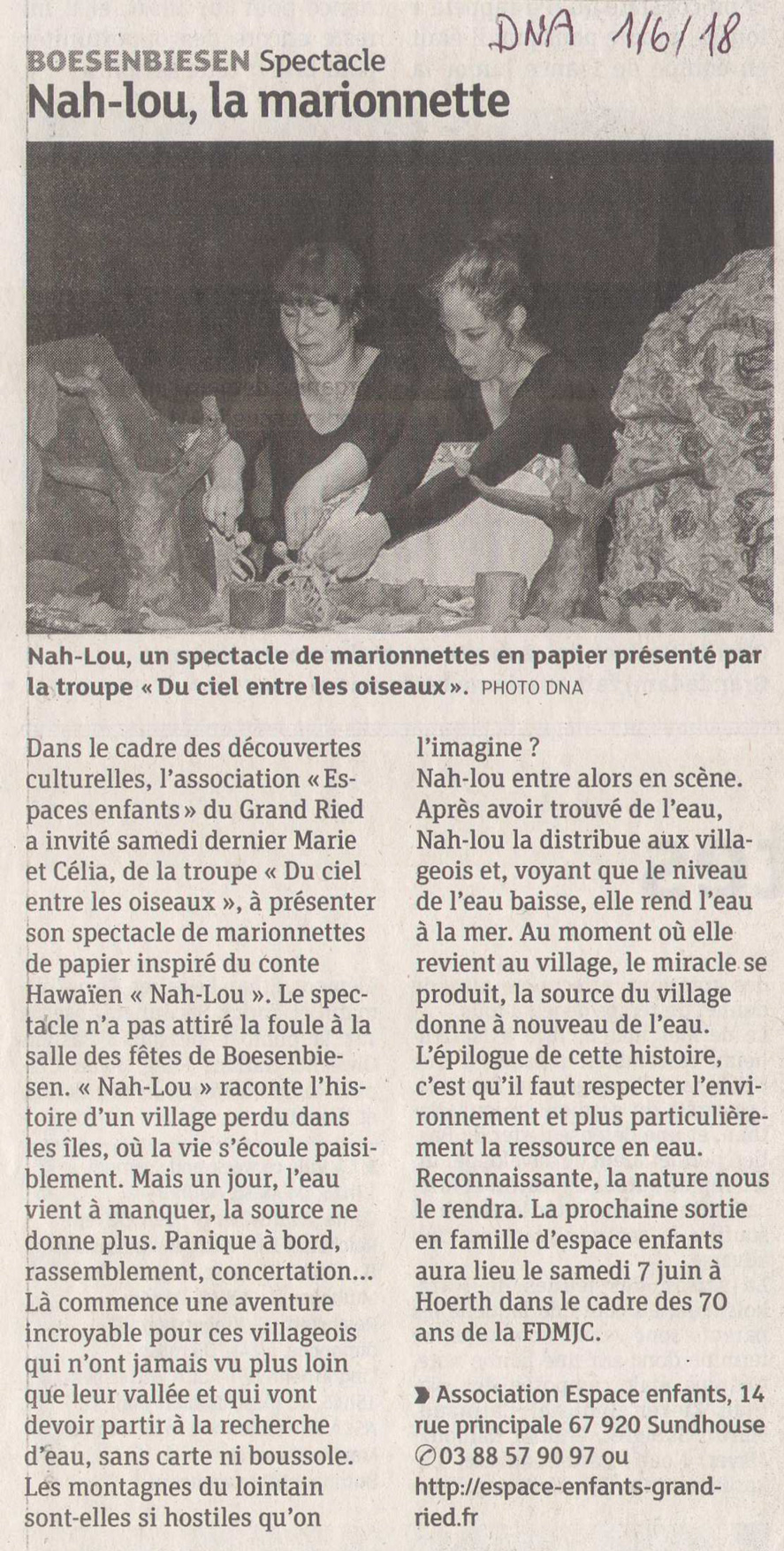 20180601 Spectacle Marionnettes Article Dna - Presse